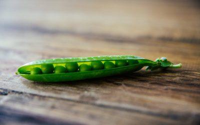 Gesundes Gemüse aus der Tiefkühltruhe