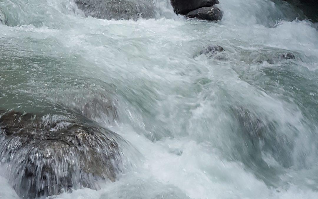 Mineralwasser oder Leitungswasser?